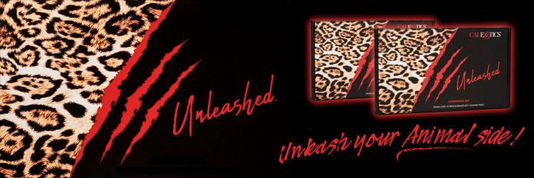 Unleashed Bondage Kits 3 Up Banner